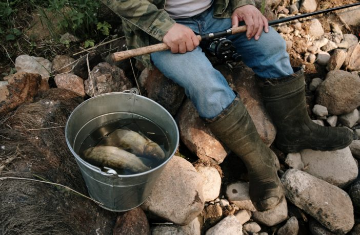 Survival Fishing Tips: How To Survive In The Wilderness - The Prepper Journal