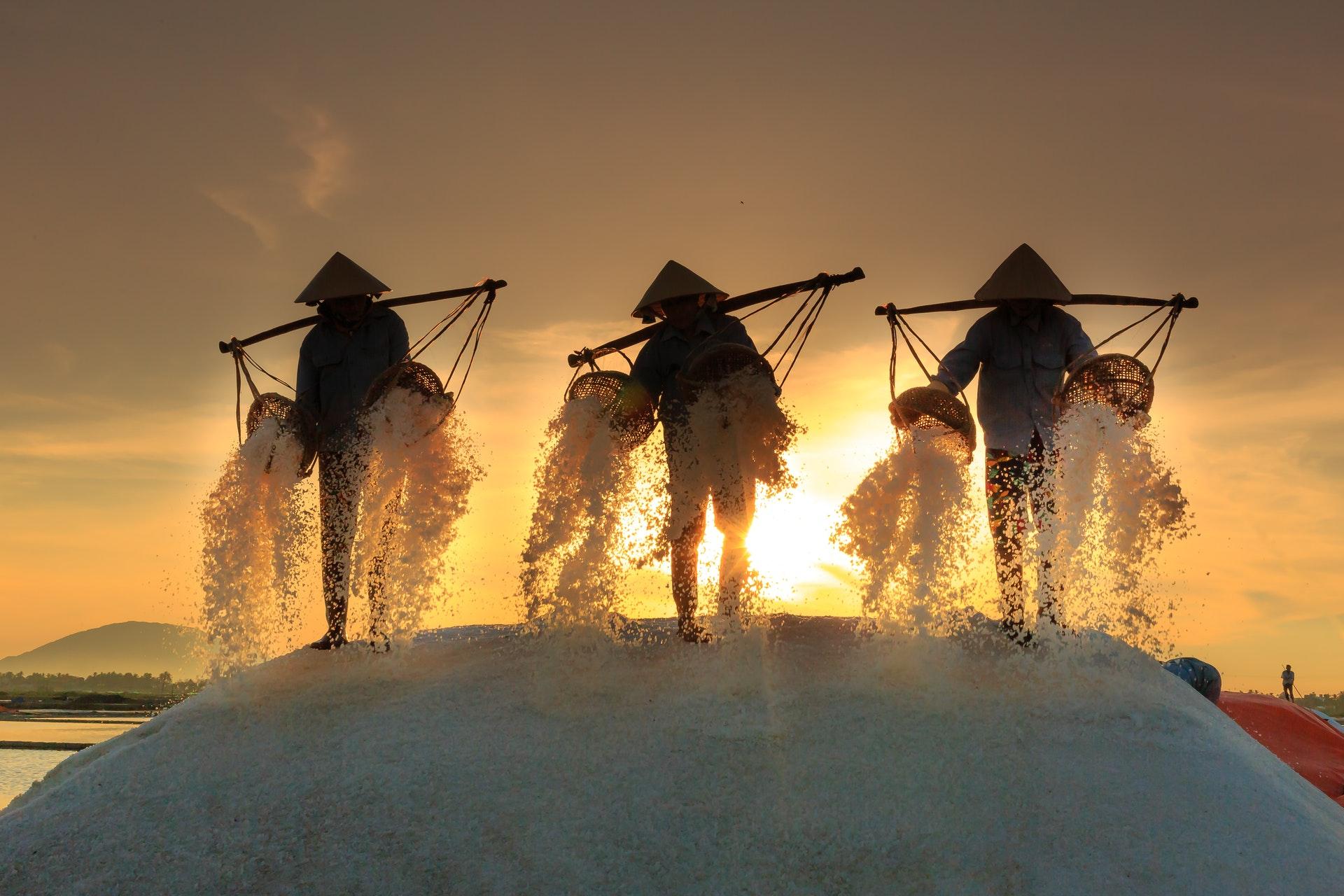 The Importance Of Storing Salt For Survival